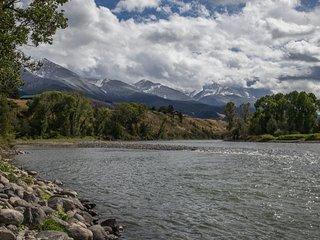PV - Yellowstone Pines