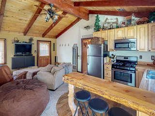NEW LISTING! Dog-friendly cabin w/full kitchen, gas fireplace, & furnished patio
