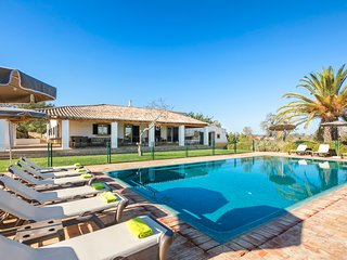 Villa Salicos 10