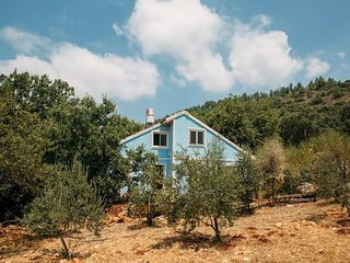 Blue house in the woods