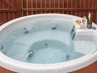 Birch Lodge 13 with Hot Tub, Newton Stewart