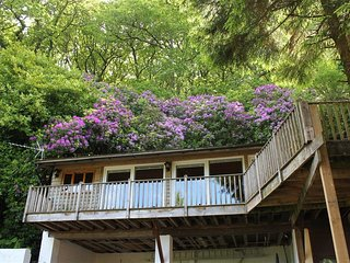 TREETOPS, one king size bedroom and perfect for couples, Woody Bay