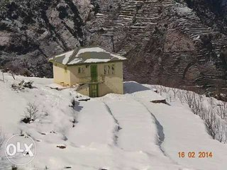 Peach Villa is an Apple Orchard samll Resort 7400ft amsl in Virgin Himalayas