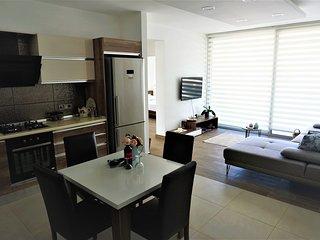 Luxury Apartment in the City Center of Nicosia.