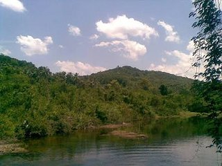 Thejaswini River Home