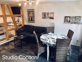 Studio / Loft  Cocoon