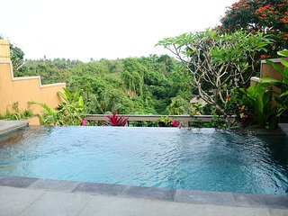 Luxury One Bedroom Villa with Pool, spacious Living Room, and Kitchen at Batuan