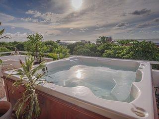 Luxury Hotel Zone Penthouse
