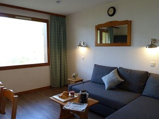 2*Silver 4 person Apartment on the slopes (PS)