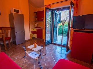 Apartment 17676