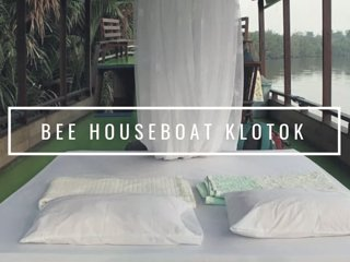 Bee Kelotok Houseboat Tanjung Puting Kalimantan