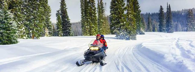 Snowmobiles let you go to the off beaten paths to explore the High Sierras