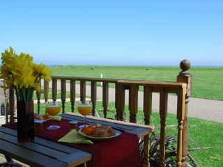 Beachscape, views out to sea, sandy beaches nearby, dog friendly with free wifi