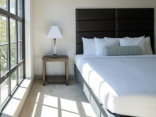 New Stay Alfred at Centric LoHi