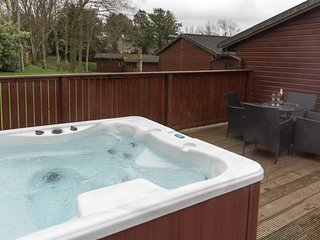 Birch Lodge 19 with Hot Tub Newton Stewart