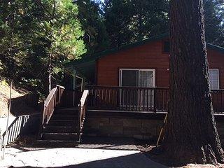 Don's Cabin  - delightful Snowshoe Springs 'Basecamp' cabin - sleeps 3-4