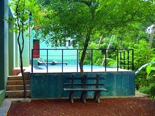 Tropical Cherry Standard - Tropical Retreat