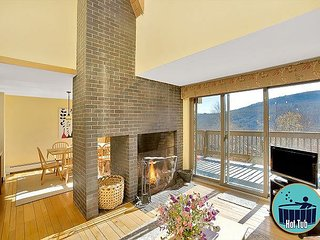 Winterberry #1 - Distinctive 4 story townhouse with private hot tub