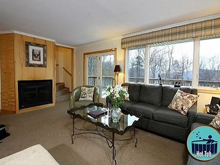 Bear Run - Seven Bedroom private home with hot tub, 3 miles from the Skyship