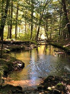Seasonal stream on property