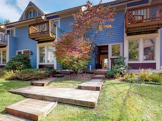 NEW LISTING! Ski-in/ski-out townhome w/private hot tub, fireplace & shared dock