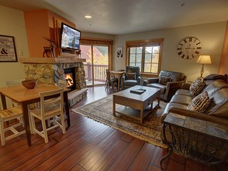 Expedition Station 8614 comes with FREE WIFI, Fireplace, Shared pool/hot tub, Po