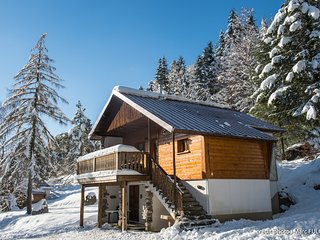 2. Chalet traditionnel en pleine nature, 8 p, 4 ch
