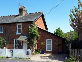Delightful period cottage with the open forest and ponies on the doorstep