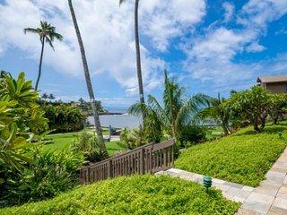 USA vacation rental in Hawaii, Lahaina HI