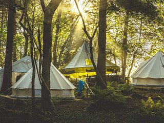 Wild Camp Night 1 : Tent #3 | Private | Sleeps 4