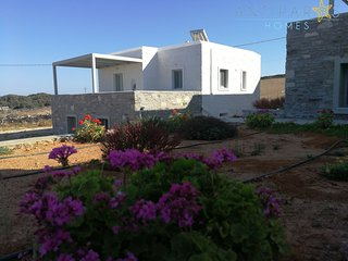 Antiparos Homes - Premium Villa for 6 persons