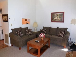 Funstays at Dells Club 2br river view + waterparks!