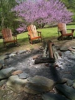 Campfire ring in spring.