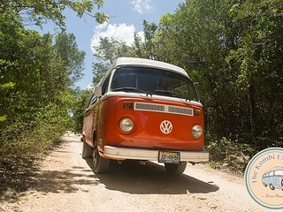 he Kombi Experience: Rental The Mandarina VW in Tulum