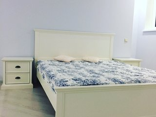 Studio in the comfort class house near to the airport Sheremetievo