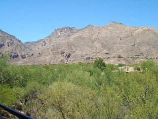 2nd Floor 2 Bedrm - Great Mountain Views and Tucson Flair