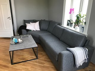 Cozy apartment near city center