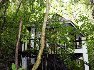 Lovely Jungle Cottage!