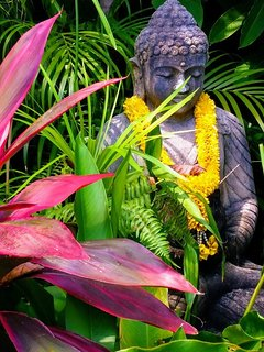 Lovely happy Budda  in his tropical garden ..