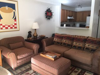3 level Town Home Minutes 2 Aspen, Mtn Views, Yard for Pets, 28 nights min