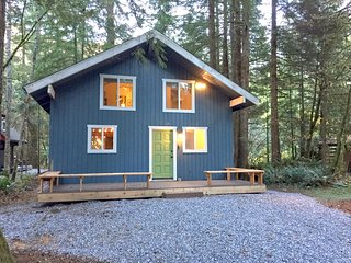 Snowline Family Cabin #66 - HOT TUB, WASHER/DRYER, DISHWASHER, BBQ, SLEEPS-10!