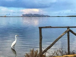B&B 'Amarena Mare Blu 'Marsala Sicily