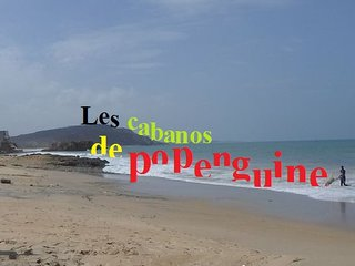 2 maisons face a la mer, piscine, pension, clim, transfert, excursions.