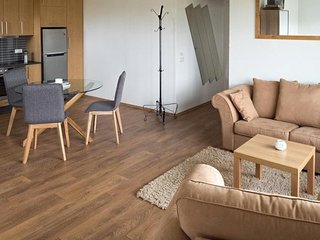 Framtidin Apartment 2 - 40m2
