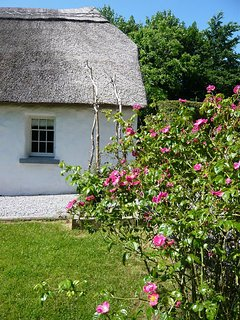 Cottages and Roses