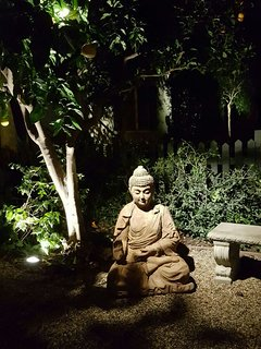 night view of the Zen Garden