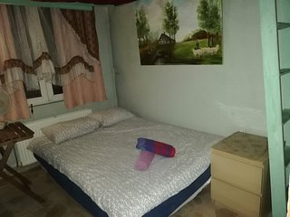 private room in house 1-2p\centre