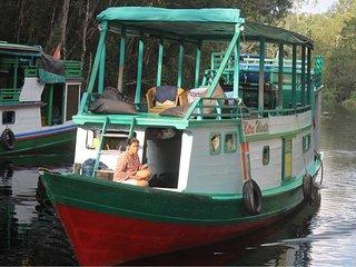 Bee Borneo Klotok House Boat