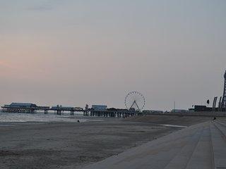Blackpool Seagull