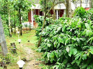 Chikmagalur cottages- 4L